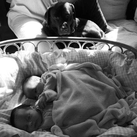 Lola & Olivia durmiendo en la minicuna en el salón vigiladas por Lenin